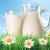 Proteina din lapte