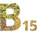 Vitamina B15