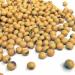 Lecitina din soia