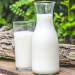 Lapte de iapa