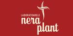 Nera Plant