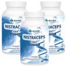 Nistraceps Forte 3 luni