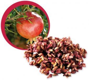 Rodie deshidratata (seminte) Raw Bio