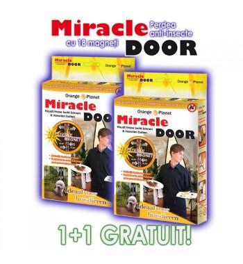 Miracle Door