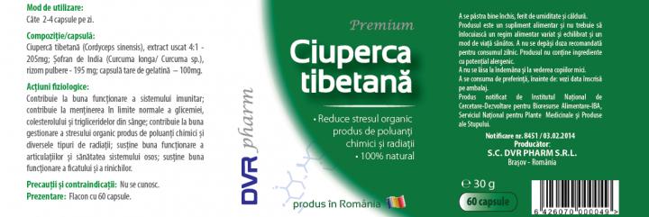 Ciuperca tibetana  prospect