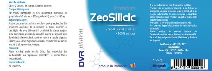 ZeoSilicic prospect