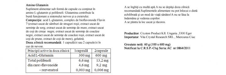Amino Glutamin 100 cps prospect